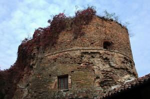 Bassignana (AL) - Il castello