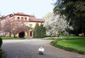 casalino_castello2