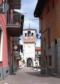 margarita torre
