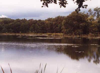 mercurago-lago